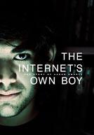 TheInternetsOwnBoy-poster